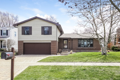 Naperville IL Single Family Home New: $399,900