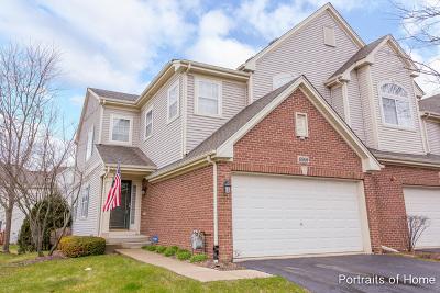 Hoffman Estates Condo/Townhouse New: 6060 Delaney Drive #5004