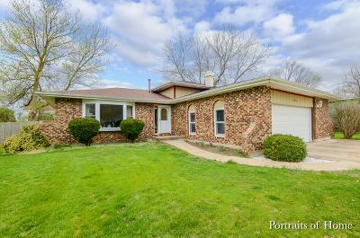 Maple Park Single Family Home For Sale: 606 Maple Avenue