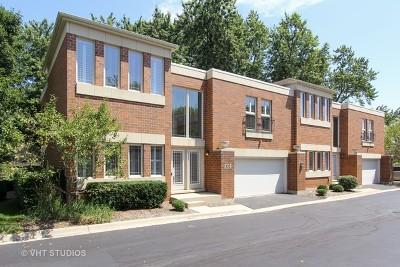 Libertyville Condo/Townhouse New: 132 Finstad Drive