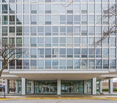 Cook County Condo/Townhouse New: 2400 North Lakeview Avenue #1805