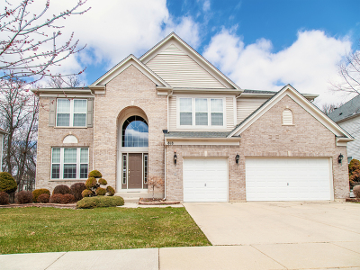 Streamwood Single Family Home For Sale: 818 Blue Ridge Drive