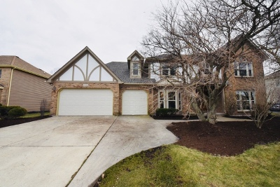 Naperville Single Family Home New: 1004 Sheringham Drive