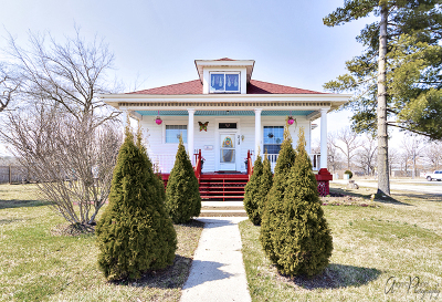 Round Lake Single Family Home For Sale: 218 Goodnow Boulevard