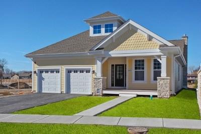 Northbrook Single Family Home New: 815 Timbers Edge Lane