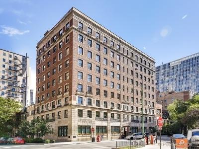 Chicago IL Condo/Townhouse New: $355,000