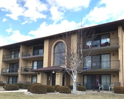 Orland Park Condo/Townhouse For Sale: 7300 Evergreen Drive #2D