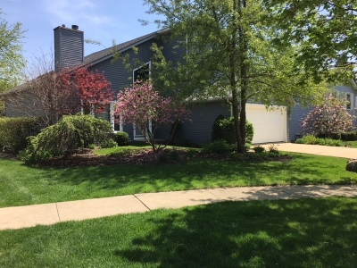Naperville IL Single Family Home New: $369,000