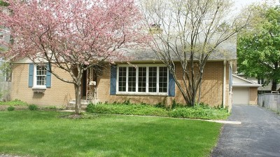 Libertyville Single Family Home New: 424 Carter Street