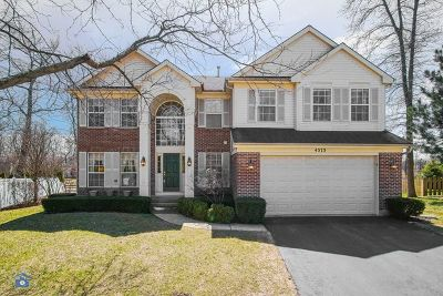 Libertyville Single Family Home New: 4573 Wren Court North East