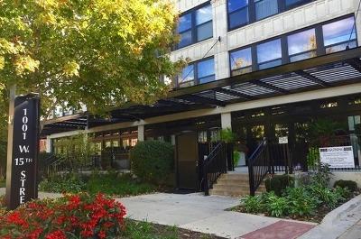 Chicago IL Condo/Townhouse New: $319,999