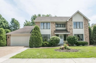 Naperville Single Family Home New: 1520 Terrance Drive
