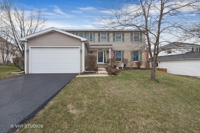 Carol Stream Single Family Home New: 875 Hampton Drive