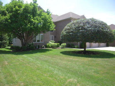 Roselle Single Family Home For Sale: 665 Red Maple Lane