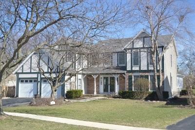 Schaumburg Single Family Home New: 501 Greenhill Lane