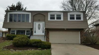 Tinley Park Single Family Home New: 7718 163rd Place