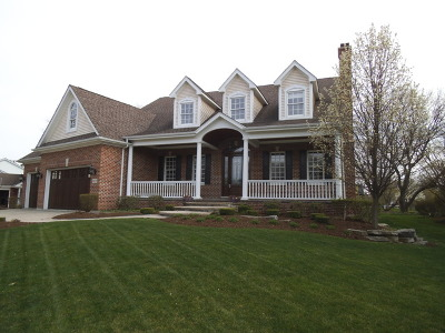 Naperville Single Family Home New: 1122 Thunderbird Lane