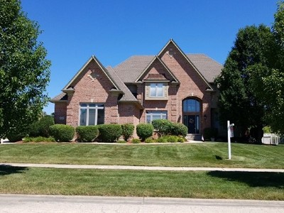Homer Glen Single Family Home For Sale: 12434 Country View Lane