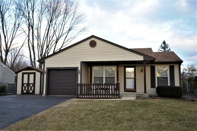 Naperville Single Family Home New: 2064 Navarone Drive