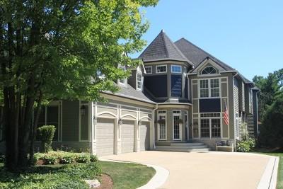 Elmhurst Single Family Home For Sale: 262 East South Street