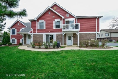Lisle Condo/Townhouse For Sale: 2757 Weeping Willow Drive #D