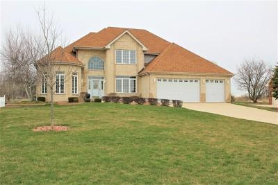 Homer Glen Single Family Home New: 12416 Country View Lane