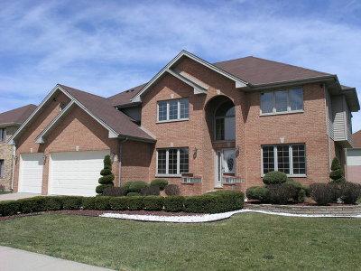 Richton Park Single Family Home New: 3838 Dewey Avenue