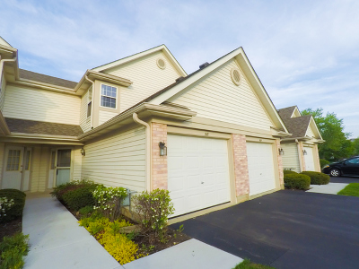 Schaumburg Condo/Townhouse New: 1617 Orchard Avenue #23B