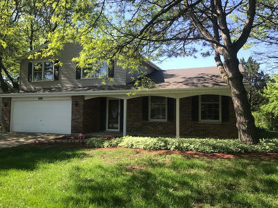 Naperville Single Family Home New: 210 Ketten Drive