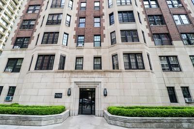 Chicago IL Condo/Townhouse New: $585,000