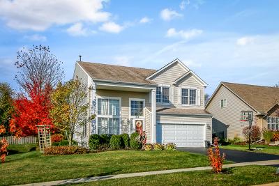 Elburn Single Family Home New: 518 Ridge Drive