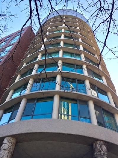 Chicago IL Condo/Townhouse New: $309,000