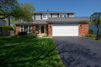 Naperville Single Family Home New: 1484 Applegate Drive