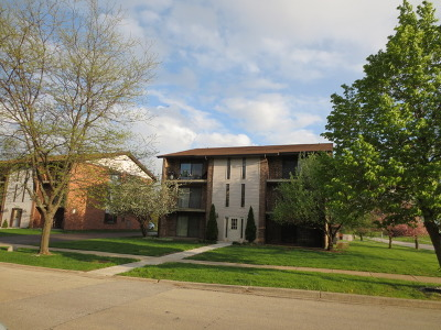 Orland Park Condo/Townhouse New: 9949 Shady Lane #1B