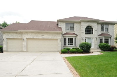 Bolingbrook Single Family Home New: 715 Crestview Drive