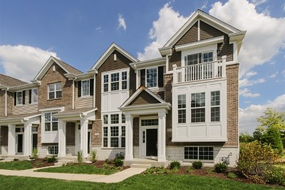 Naperville Condo/Townhouse For Sale: 2937 Madison Lot#2606 Drive