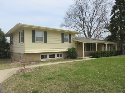Palatine Single Family Home New: 853 North Martin Drive