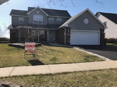 Romeoville Single Family Home For Sale: 618 Haley Meadows Drive