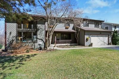 Libertyville Single Family Home New: 943 Bartlett Terrace