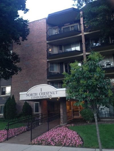 Arlington Heights Condo/Townhouse New: 1 North Chestnut Avenue #4A