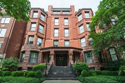 Chicago IL Condo/Townhouse New: $589,900