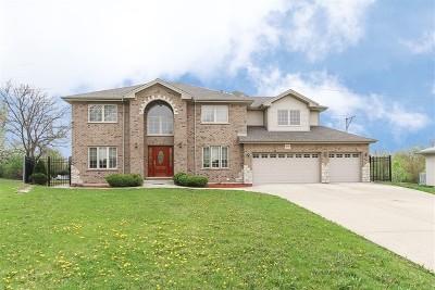 Orland Park  Single Family Home New: 13735 Venetian Court
