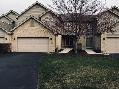 Orland Park Condo/Townhouse New: 11938 Sterling Drive