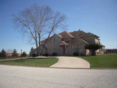 Olympia Fields Single Family Home For Sale: 20003 Mohawk Trail