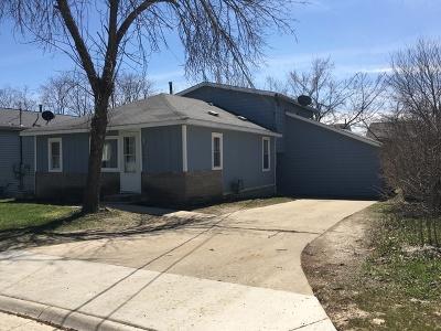 Round Lake Single Family Home New: 24655 West Passavant Avenue