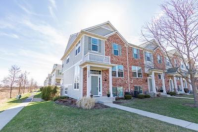 Elgin IL Condo/Townhouse New: $198,900