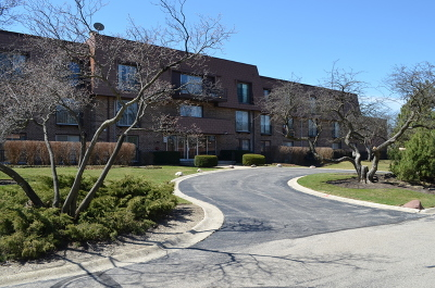 Northbrook Condo/Townhouse New: 3950 Dundee Road #201