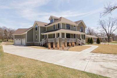 Barrington Single Family Home For Sale: 717 Bryant Avenue