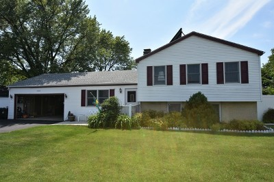 Carol Stream Single Family Home New: 1n044 West Street