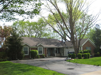 Naperville Single Family Home New: 1024 Briergate Drive